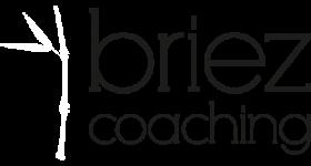 BriezCoaching_Logo_2